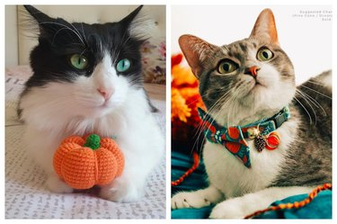 Fall Cat Toys & Accessories on Etsy