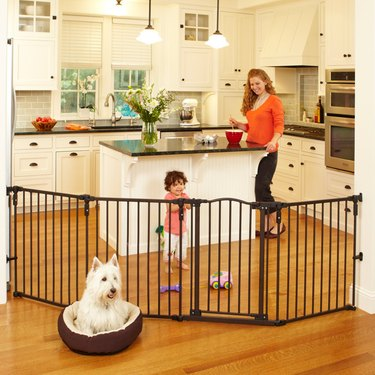 pet gate and playpen