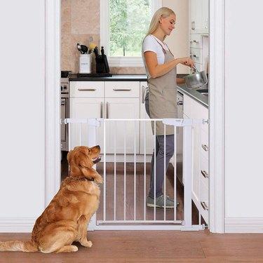 pass through pet gate