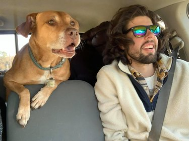 man and dog in car on road trip