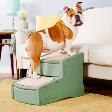 Pet Gear Easy Step II Cat & Dog Stairs