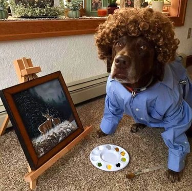 dog dressed as bob ross