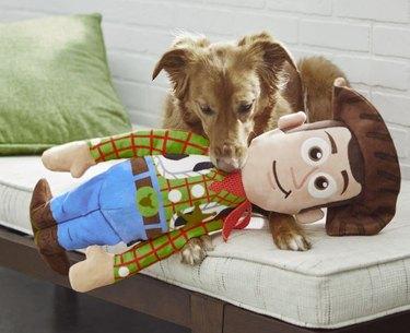Pixar Woody Wagazoo Plush Squeaky Dog Toy