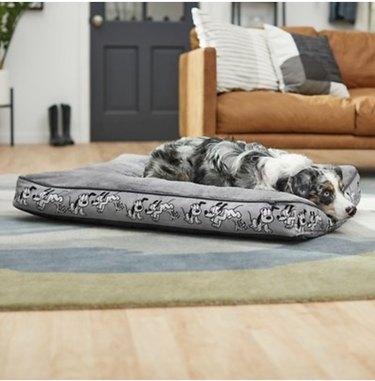 Disney Pluto Pillow Cat & Dog Bed
