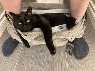 Large black cat laying in pants and underwear between feet of person sitting on toilet.