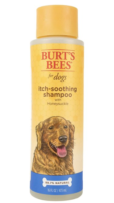Burt's Bees Itch-Soothing Shampoo with Honeysuckle