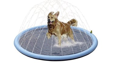 Pet Soft Splash Sprinkler Pad