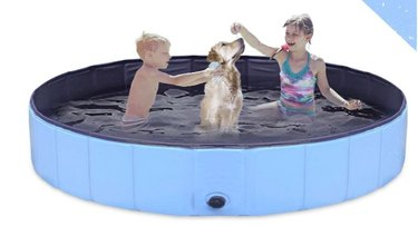 GoStock Dog Pool