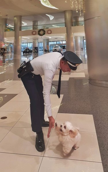 """Security guard bending down to """"high five"""" a little white dog"""