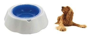 Chilled Pet Cooler Bowl