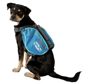 Outward Hound DayPak for Dogs