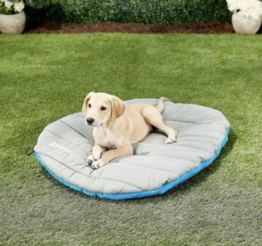 Chuckit! Travel Pillow Dog Bed