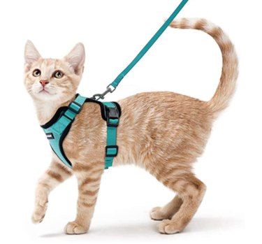 Rabbitgoo Cat Harness and Leash for Walking