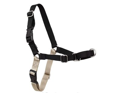 PetSafe Easy Walk Dog Harness, No Pull Dog Harness
