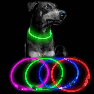Clan-X LED Dog Collar, Flashing Dog Lights for Night Safety