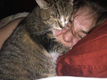clingy cat sleeps on human's face