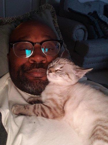 cat uses man as pillow
