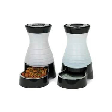 PetSafe Healthy Pet Gravity Food or Water Station, Automatic Dog and Cat Feeder