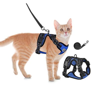 Cat Escape Proof Harness and Leash for Walking