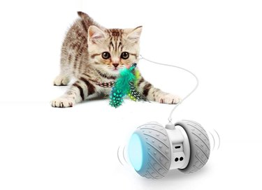Ralthy Interactive Robotic Cat Toy