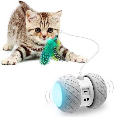 Ralthy Interactive Robotic Cat Toys, Automatic Irregular USB Charging 360 Degree Self-Rotating Ball