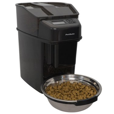 PetSafe Healthy Pet Simply Feed - Automatic Dog and Cat Feeder