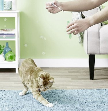 Pet Qwerks Incredibubbles for Cats