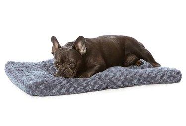 Amazon Basics Plush Dog Pet Bed Pad
