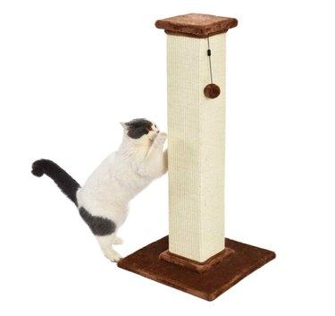 Amazon Basics Large Premium Tall Cat Scratching Post