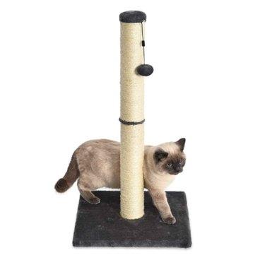 Amazon Basics Medium Cat Scratching Post - 16 x 16 x 32 Inches, Gray