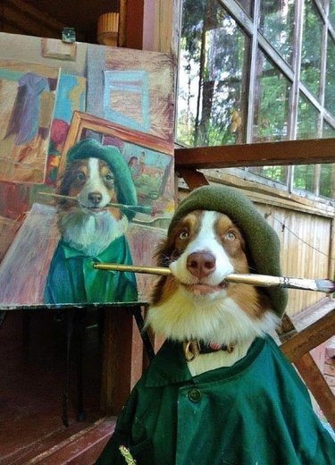 dog poses for picture