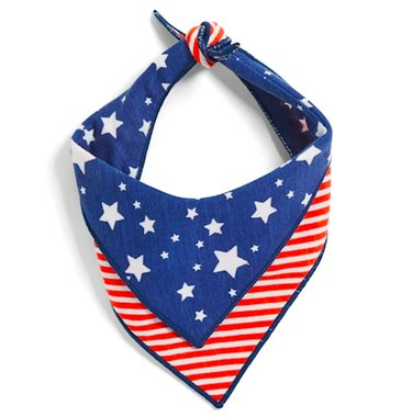 YOULY The Citizen Americana Collection USA Star & Striped Dog Bandana, X-Small/Small