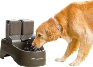 Drinkwell Indoor/Outdoor Plastic Dog & Cat Fountain, 450-oz