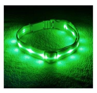 Blazin' Safety LED USB Rechargeable Nylon Dog Collar