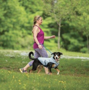 Kurgo Core Cooling Dog Vest