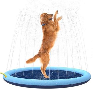 Flyboo Splash Sprinkler Pad for Dogs