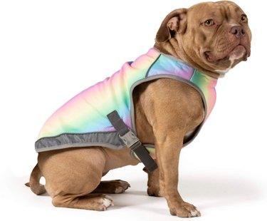 Canada Pooch Cooling Dog Vest