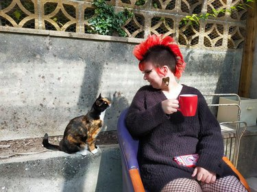 cat stares at woman with mohawk