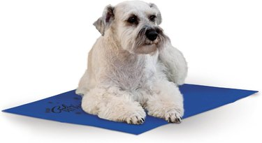 K&H Products Coolin' Dog Mat