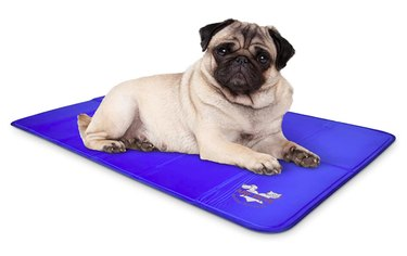 Arf Pets Dog Self Cooling Mat Pad