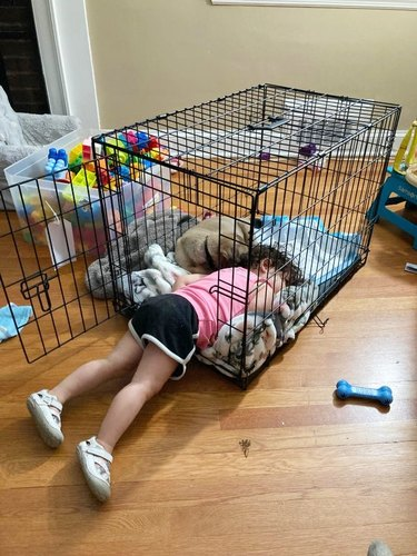 child and adopted dog sleep together