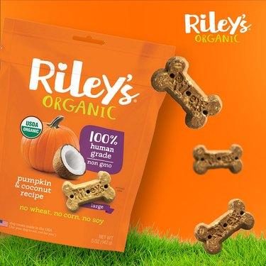 pumpkin coconut dog treats