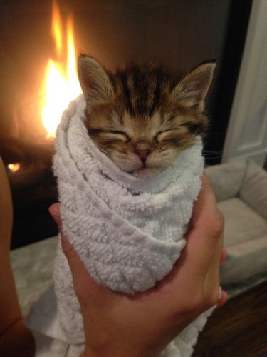 A brown striped kitten wrapped up in a white towel beside a fireplace.