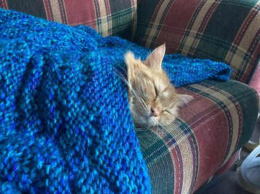 An orange tabby cat sleeps on a plaid couch beneath a blue knitted blanket.
