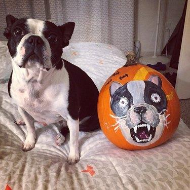 dog's face drawn on pumpkin