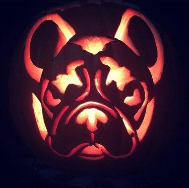 dog-o-lantern lit up with candle