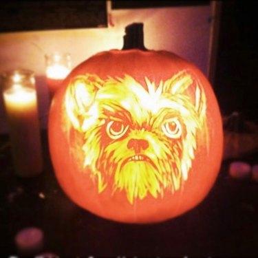 detailed pumpkin carving of dog
