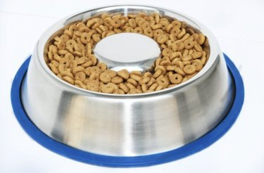 stainless steel slow feeder bowl