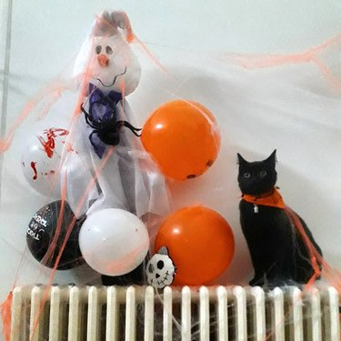 black cat poses with Halloween balloons