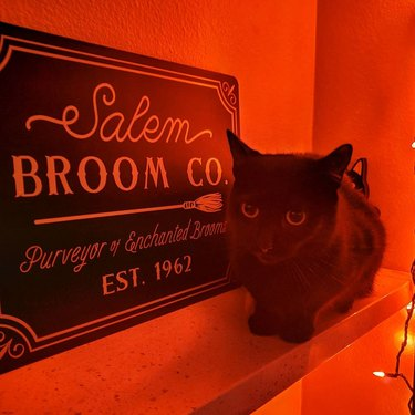 black cat with broom store sign